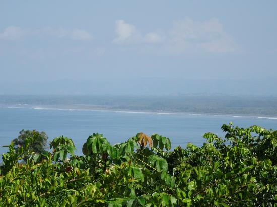 Tulemar Bungalows & Villas: View from the amazing balcony