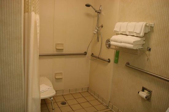 Hampton Inn Richmond-Midlothian Turnpike: Roll-In Shower