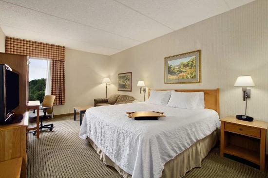 Hampton Inn Middletown: King Room