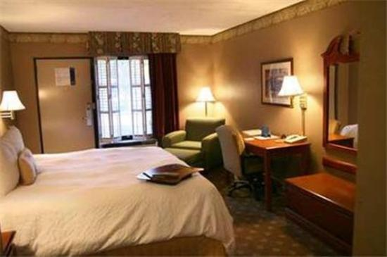 River Chase Inn: Guest room