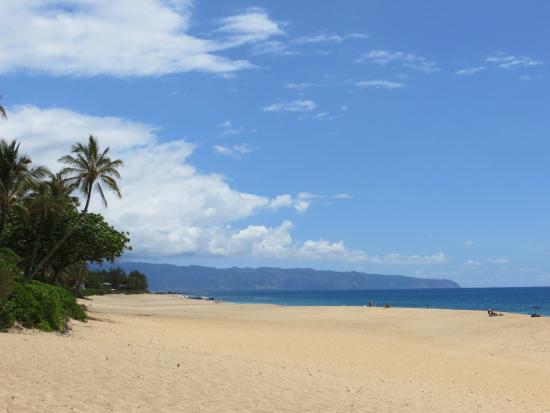 Private Tours Hawaii Banzai Pipeline Beach