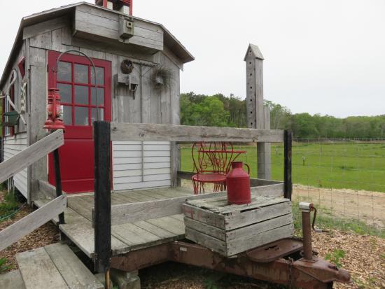 Cranberry Bog Tours: gift shop