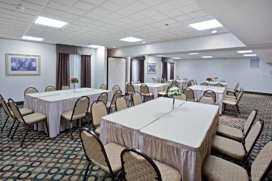 Hampton Inn Cleveland Airport-Tiedeman Rd: Meeting Room