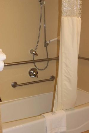Hampton Inn & Suites Greenfield: Accessible Tub
