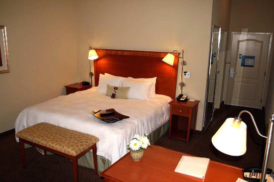 Hampton Inn Clinton: Single King Room