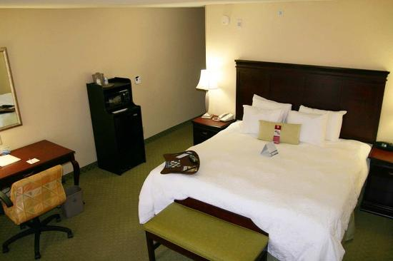 Hampton Inn Lenoir City: King Room