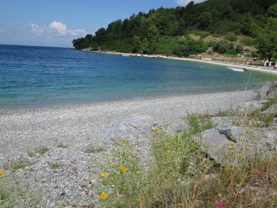 Hotel Panormos Beach Skopelos: Strand direkt unterhalb des Hotels
