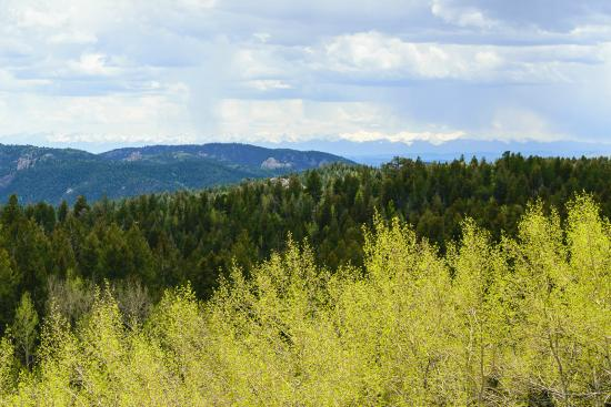 Divide, CO: A view from Mueller State Park