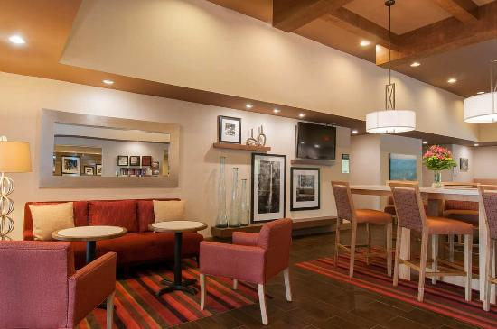 Hampton Inn Brevard: Focal Wall