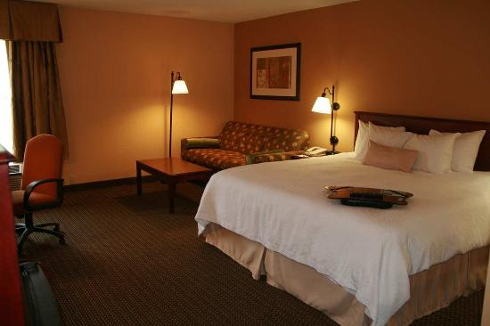 LaGrange, GA: Accessible King Room
