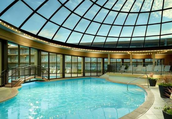 Indoor Outdoor Pool Picture Of Chicago Marriott O 39 Hare Chicago Tripadvisor