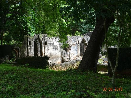 Jumba la Mtwana: Jumba ruins