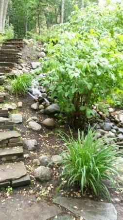 Castle Creek Inn: Lower Garden