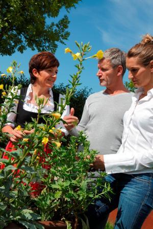 1. Zentrum fur Traditionelle Europaeische Medizin: Kräuter