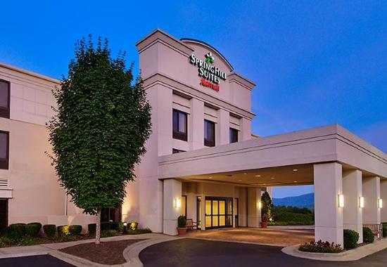 Springhill suites asheville nc hotel reviews tripadvisor for Tripadvisor asheville nc cabins
