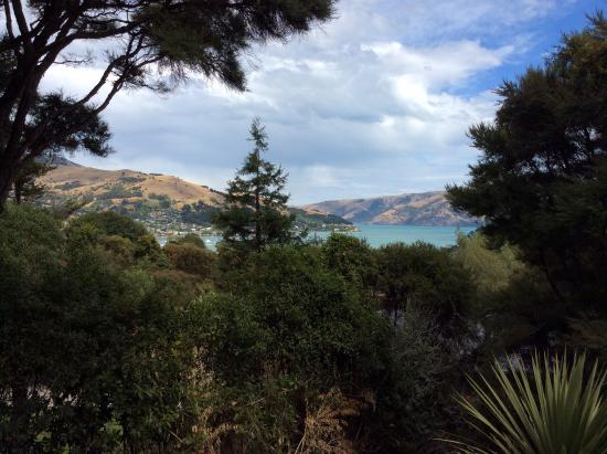 Akaroa Cottages - Heritage Collection: View from our cabin