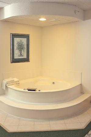 Annandale, Μινεσότα: One Queen Bed Jacuzzi Suite