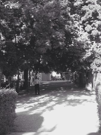 Parque de La Taconera : Un paseo muy relajante...