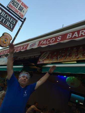 Paco's Bar Funny Bunny's Photo