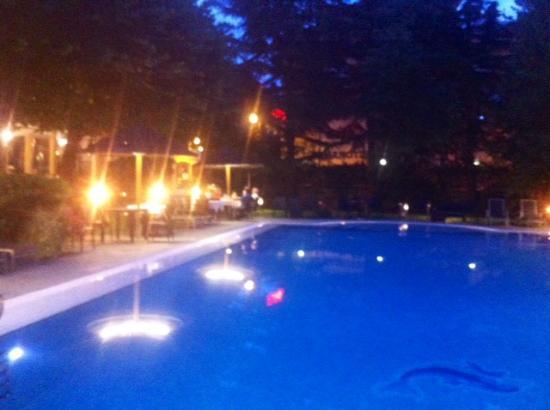 Hotel Clelia: Voor het diner kan aan de rand van het zwembad worden gedineerd. Erg romantisch.