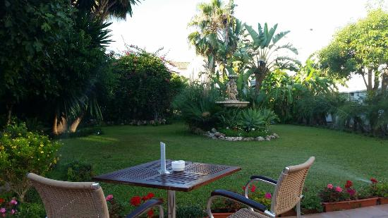 Mushroom risotto picture of casa jardin nerja tripadvisor for Casa jardin culebra
