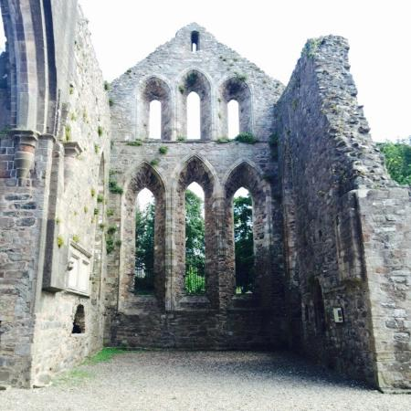 Grey Abbey: Worth checking out! A quick stop, and not crowded!