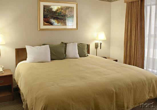 Country Inn & Suites By Carlson, Bothell: King W-Duvet - Country Inn & Suites Bothell