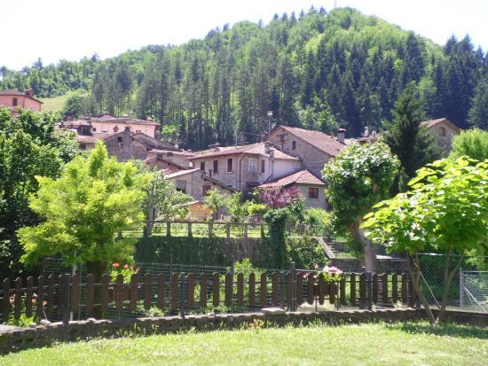 Hotel Ristorante Europa  Palazzuolo Sul Senio  Provincia