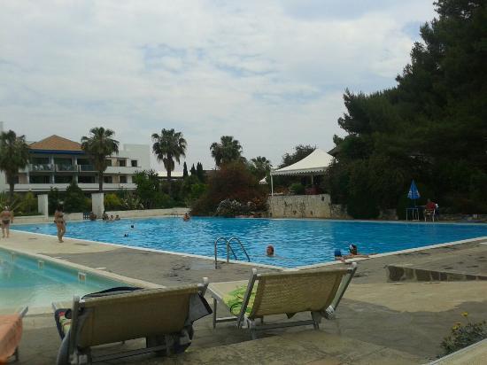 Pineta verso la spiaggia picture of villaggio giardini - Hotel villaggio giardini d oriente ...