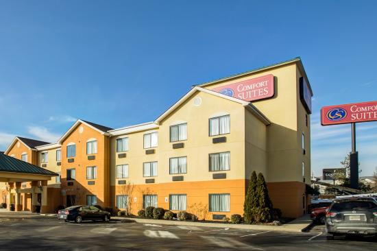 Photo of Comfort Suites - Georgetown