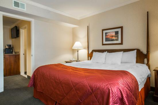 Clarion Inn & Suites : Ny Snk