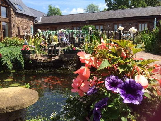 Usk Country Cottages: Summers here