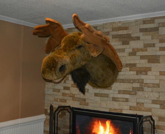 The Friendly Moose, Matthews - Restaurant Reviews, Phone Number ...