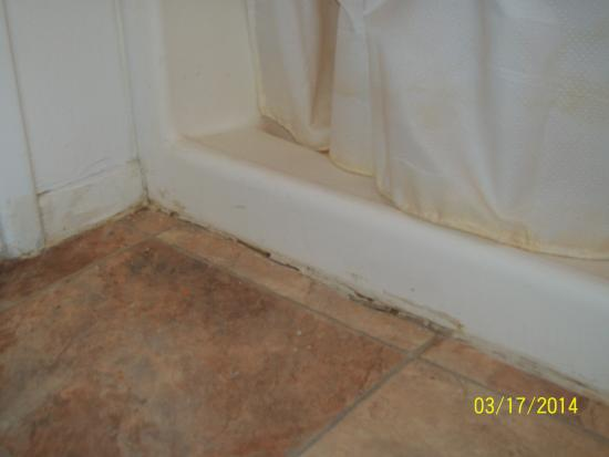 The Lodge at Sunridge: This is one of several photos of the bathroom.  Mold and scum in/out of the shower, water drippi