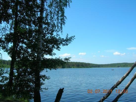 Komarovo, Russia: Один из видов Щучьего озера