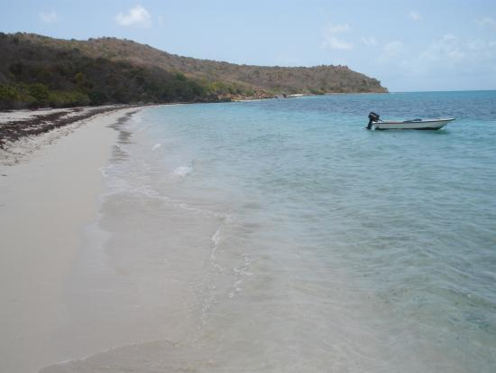 Bitter End Yacht Club: Prickly Pear Island Beach