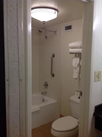 Best Western Plus Garden Inn: Shower