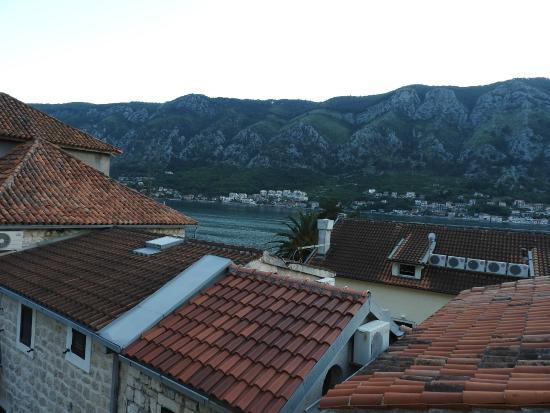 Vila Panonija : Vista desde la habitación