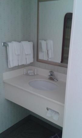 SpringHill Suites Washington: bagno