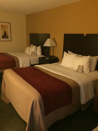Comfort Inn Jonesville: Room