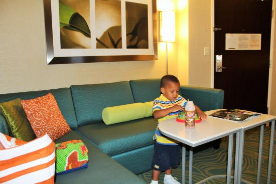 SpringHill Suites Detroit Southfield: like home