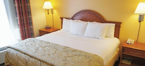 La Quinta Inn Lincoln : Guest room