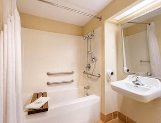 Super 8 Spartanburg/I-26 Exit 22: ADA Bathroom