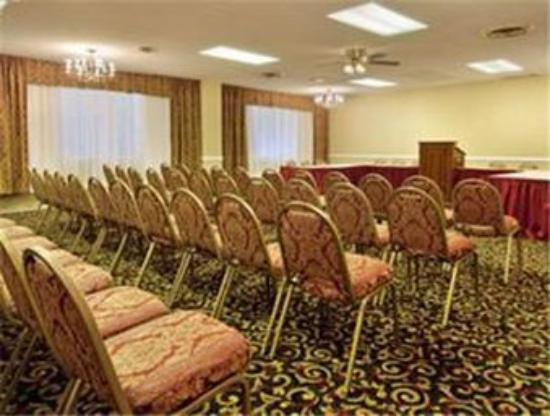 Nashville Airport Inn & Suites: Meeting Room