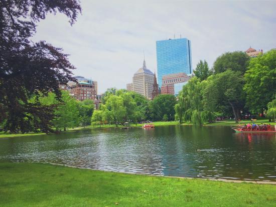 Boston Public Garden Picture Of Boston Public Garden