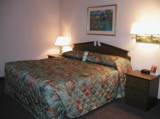 Marietta Extended Stay Hotel : Guest room