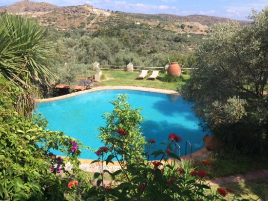 Antik Zeytin Hotel & Art: Pool