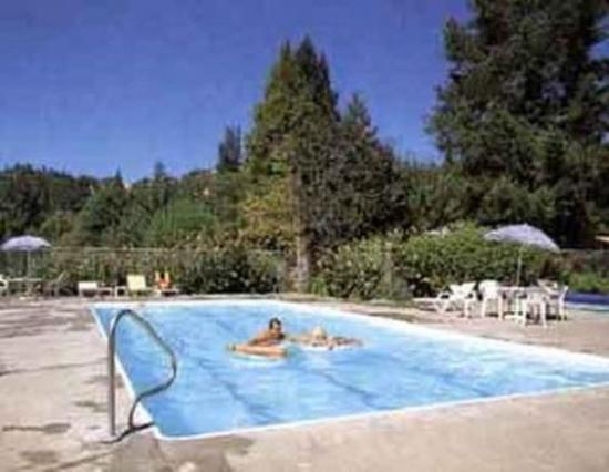Dean Creek Resort: Pool view