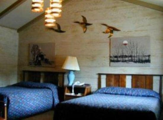 Woodland Motor Lodge: Guest room