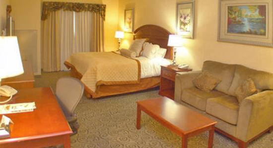 Holiday Inn Express & Suites Bakersfield Central : Guestroom King